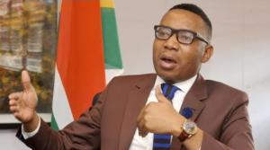 Former Higher Education Deputy Minister's Clarifies Over Stella Ndabeni's Visit