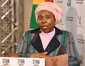 Dlamini-Zuma Calls On To Appear In Public Without Musk Be Illegal-SurgeZirc SA