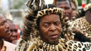 """DA And EFF: """"How Will Zwelithini Funds Be Useful""""-SurgeZirc SA"""