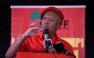 Malema Plans To Remove Zimbabwe Embassy In SA-SurgeZirc SA