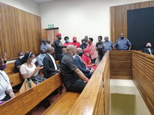Malema And Ndlozi Pleaded Not Guilty For Assault Case - SurgeZirc SA