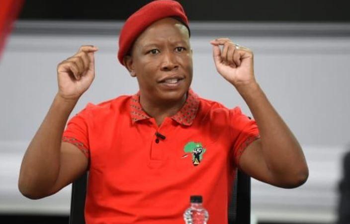 """Malema Hits Back At Union And SAPS Criticism: """"Voetsek ANC, Bloody Fools"""" -SurgeZirc SA"""