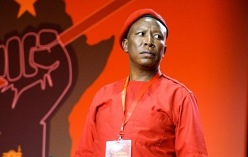 ANC Called Out For Being Terrified Of Julius Malema-SurgeZirc SA