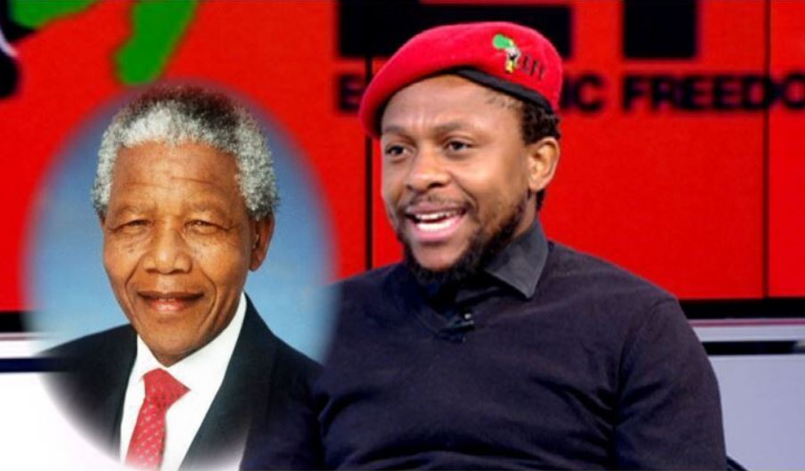 "Ndlozi: ""Mandela Wasted 27 Years, The Man Never Understood The Racism Problem""-SurgeZirc SA"