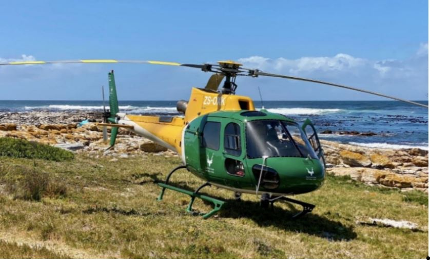 SANParks Pilot Injured After Helicopter Crashes In Cape Town-SurgeZirc SA