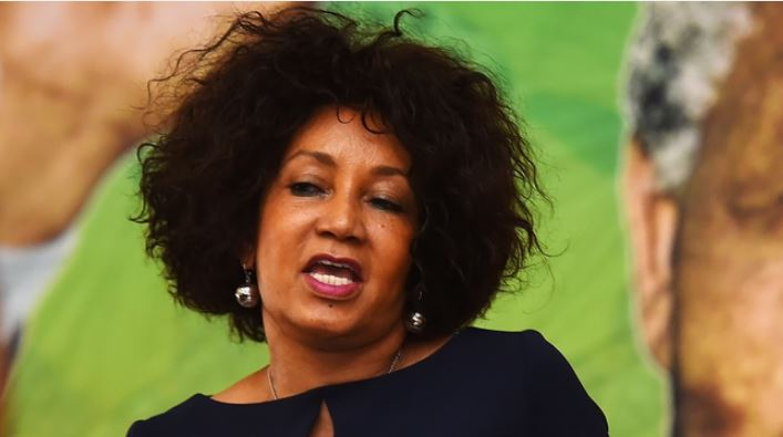 Lindiwe Sisulu Loses Control, Gets Violent And Confiscates Activist's Phone (Video)-SurgeZirc SA