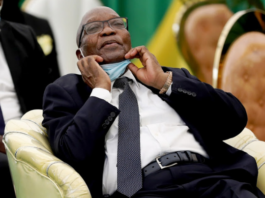 """Jacob Zuma Punches Back: """"Constitutional Court Has Allowed Itself To Be Abused""""-SurgeZirc SA"""