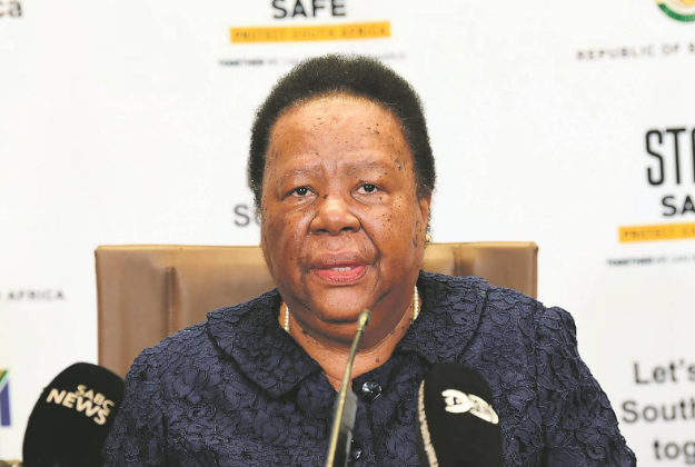 """Pandor: """"R118m Paid For Non Existent Land In NY A National Embarrassment""""-SurgeZirc SA"""