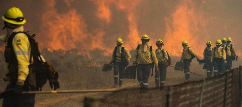 'Arsonist' Arrested In Connection With Cape Town Fires-SurgeZirc SA
